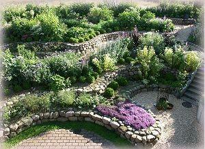 mien blomengoorn ~ ursula berger ~ schmalensee - mein garten, Garten ideen